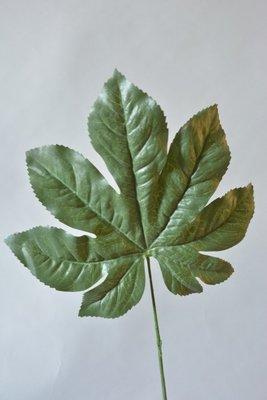 Aralia blad, 73cm